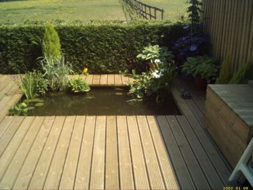 Newleaf landscapers newton abbot garden services newton for Garden design devon